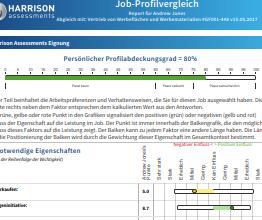 JobFit Analyse